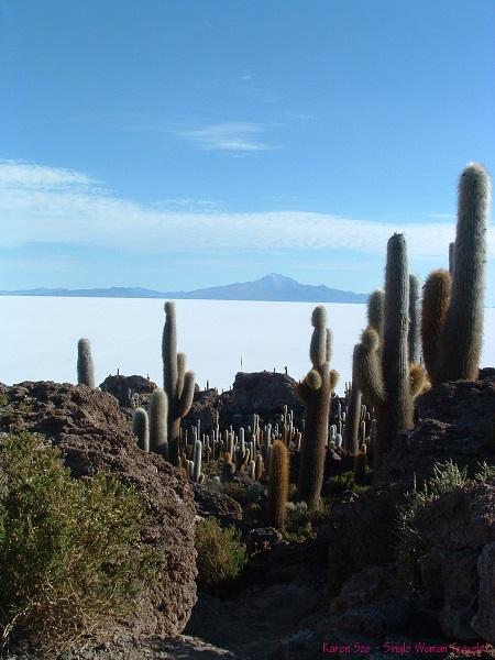 Incahuasi island with giant cactii looking out on the Uyuni salt flat