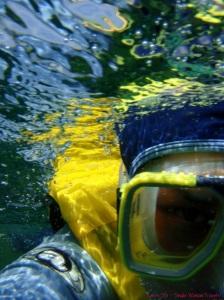 Karen Sze, the Single Woman snorkels in the Great Barrier Reefs, Australia