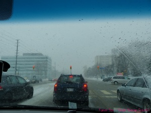 Braving winter snow storm to Mississauga for spiritual food tour