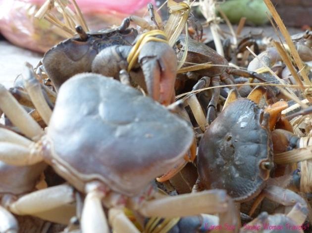 Fresh crabs at Morning market in Luang Prabang Laos