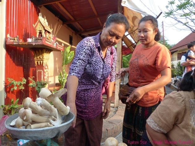 Fresh mushrooms at Morning market in Luang Prabang Laos