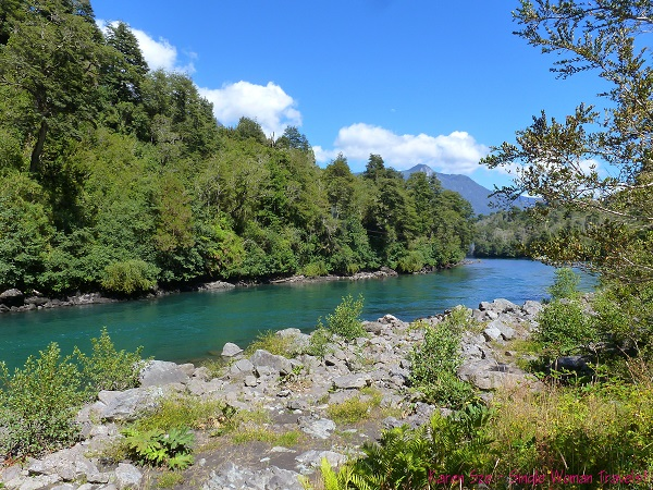 View of Petrohue river