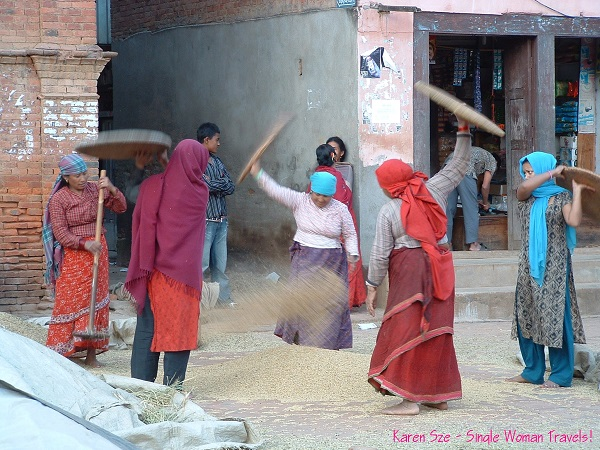 Nepali Women in Panauti, Nepal preparing wheat after harvest