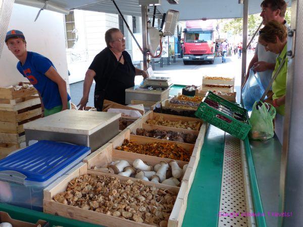 Mushroom farmer at Lausanne Switzerland