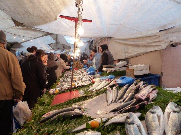 Seafood vendors of Fatih market Istanbul Turkey