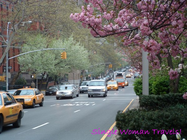 Spring in New York City April 2005