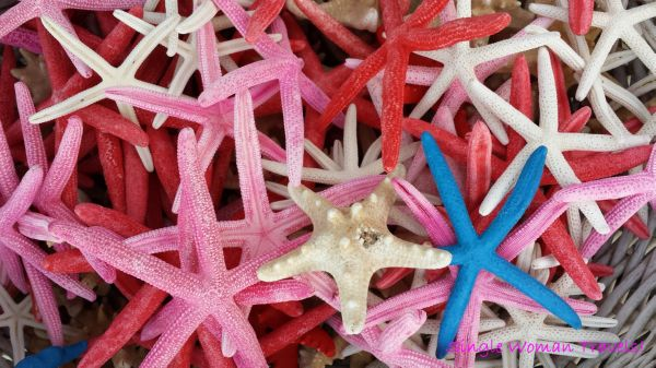 Multi-coloured dried starfish found in Rhodes island, Greece