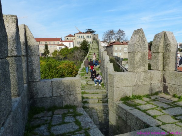 Basking in the warm sun at Muralha Fernandina, old city wall of Porto, Portugal